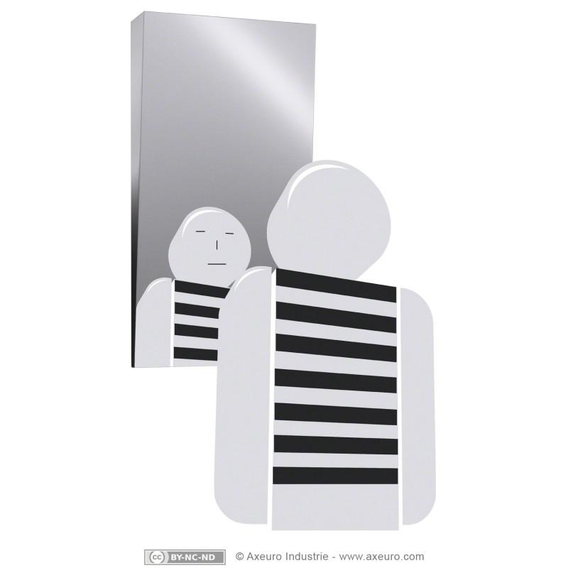 Miroir inclin pour handicap s axeuro for Miroir inox incassable