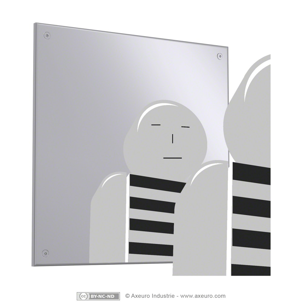 Miroir incassable axeuro for Miroir acrylique incassable